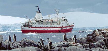 """Leckgeschlagen in der Antarktis: Die """"MV Explorer"""""""