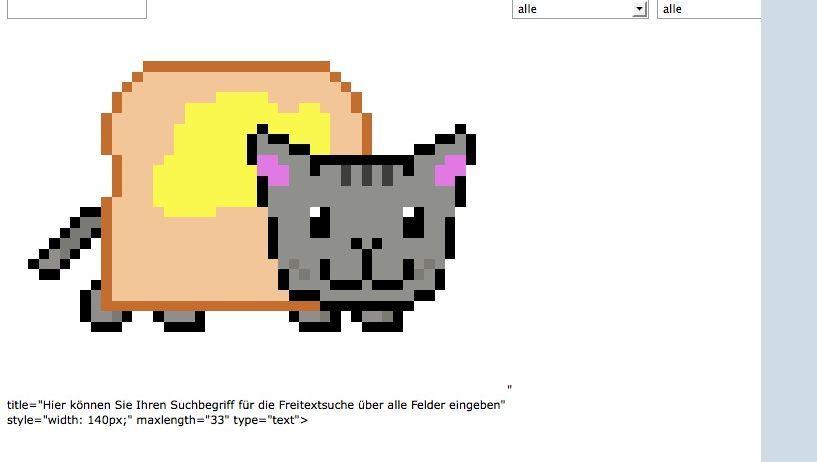 Katzenbild auf bundesregierung.de: Hacker entdeckt Sicherheitslücke