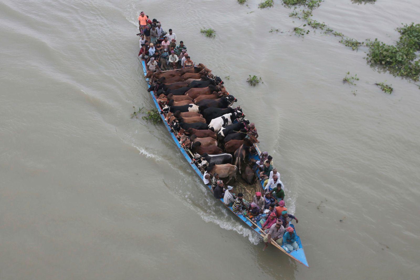 Coronavirus - Opferfest in Bangladesch