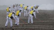 Überreste eines Tsunamis-Opfers nach zehn Jahren gefunden