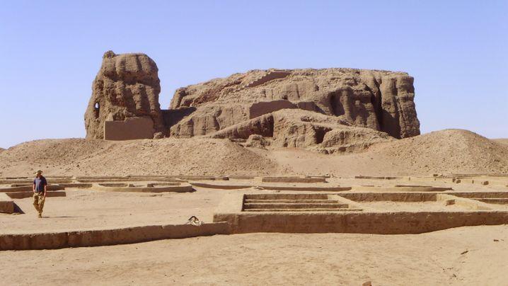 Bewässerungstechnologie: Besser als die alten Ägypter