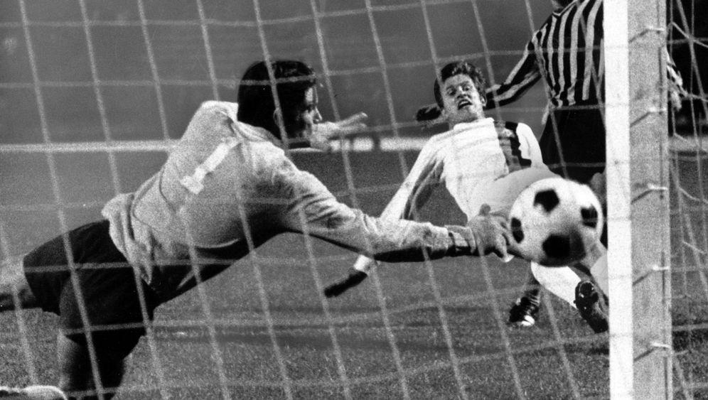 Borussia Mönchengladbach: Zurück auf der großen Bühne