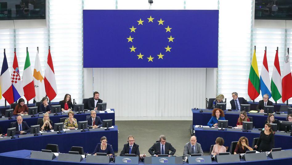 """Stimmten mehrheitlich für Resolution über """"Klimanotstand"""": Abgeordnete des Europaparlaments"""