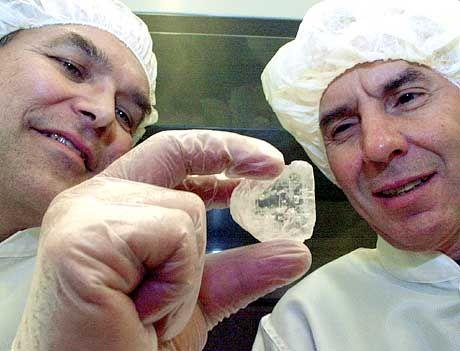 Rusell Vreeland (links) und William Rosenzweig gelang die Wiederbelebung des Ur-Bakteriums