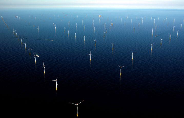 """Der bei Helgoland gelegene Offshore-Windpark """"Meerwind Süd/Ost"""" (Archiv)"""