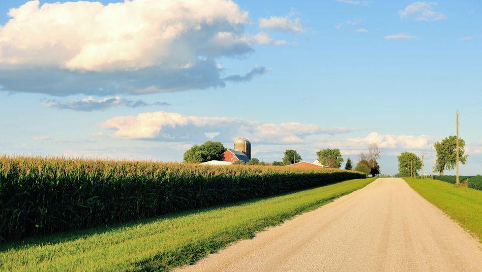 Landwirtschaft in Illinois
