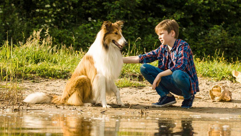 Lassie und Herrchen Flo