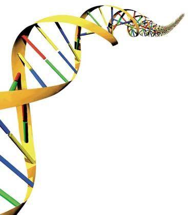Doppelhelix des menschlichen DNA-Codes: Sorgloser Umgang