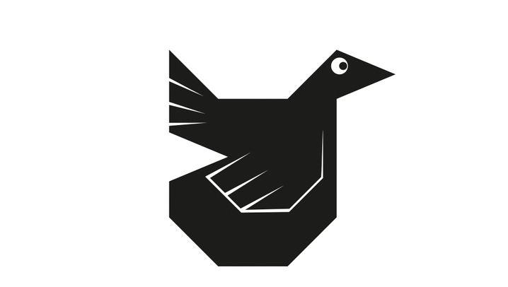 Escher-Parkettierung: Vom Quadrat zur Vogelkachel