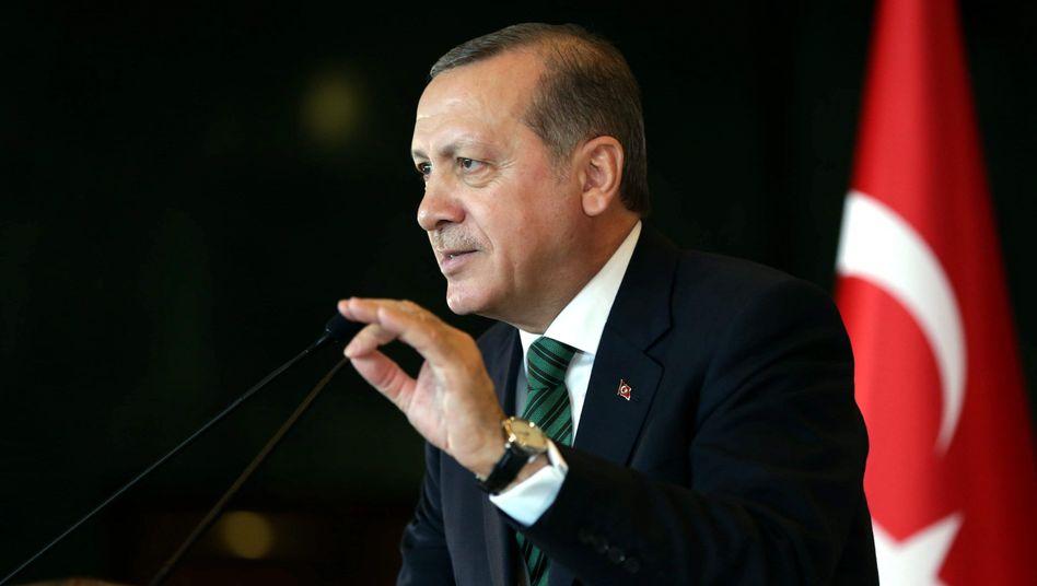 Präsident Erdogan: Kein Verständnis für Freilassung kritischer Journalisten