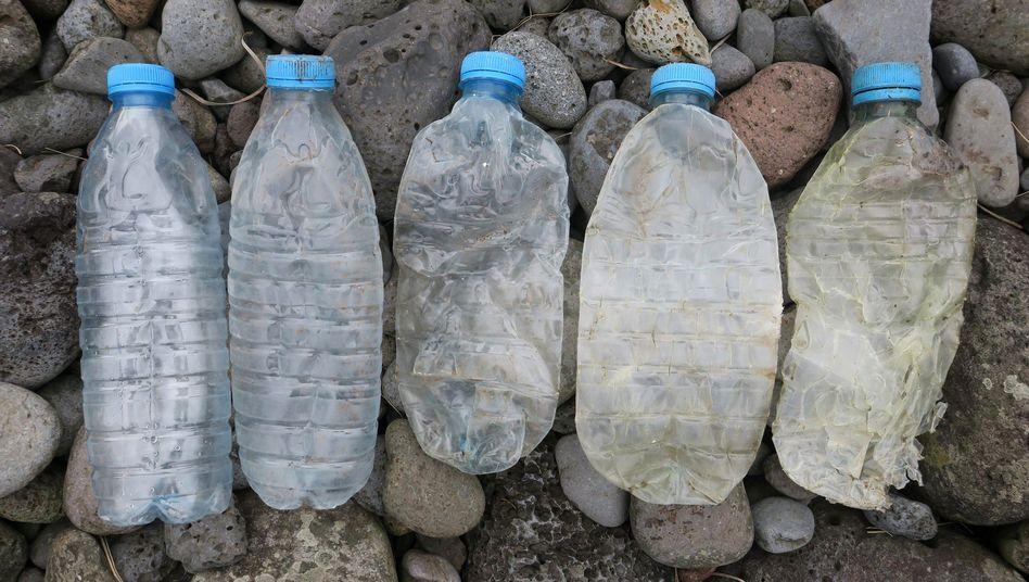 Solche Halbliterflaschen für Wasser sind der häufigste Plastikmüll am Strand von Inaccessible Island