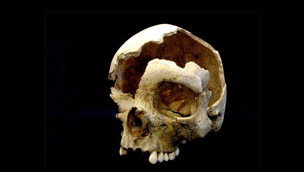 Archäologie: Steinzeit-Totenwelt unter Hagen