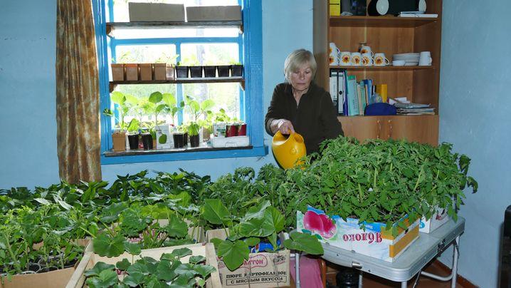 Wer Gemüse essen will, muss es anbauen