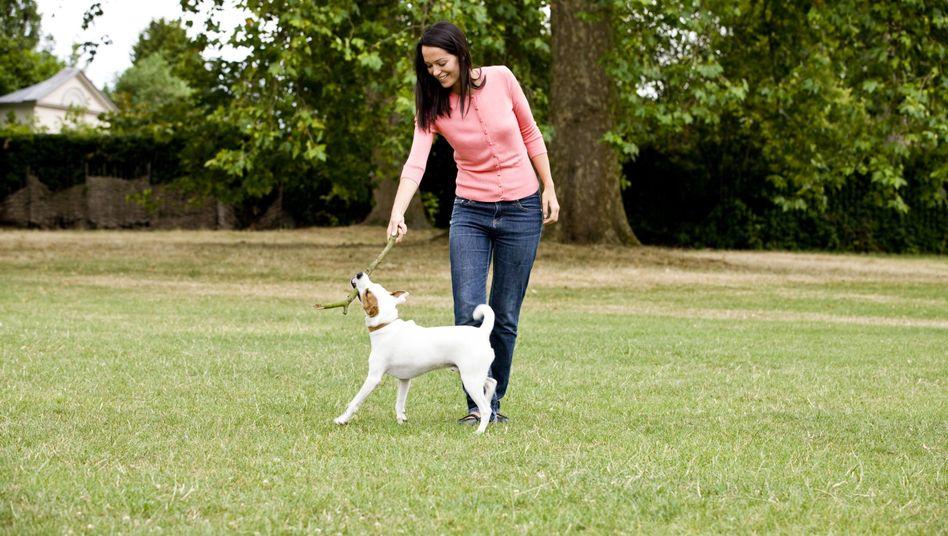 Frau mit Hund: Besonders der tägliche Spaziergang ist förderlich