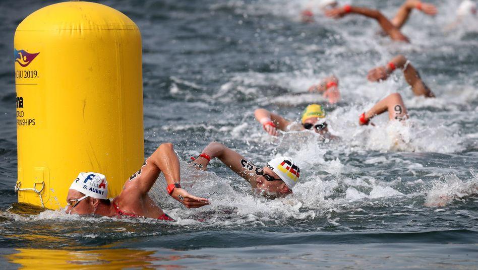 Freiwassersportler bei der Schwimm-WM 2019