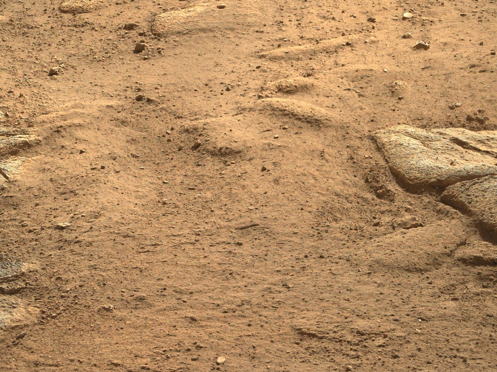 NASA s Mars Perseverance rover acquired this image using its Right Mastcam-Z camera. Mastcam-Z is a pair of cameras loc