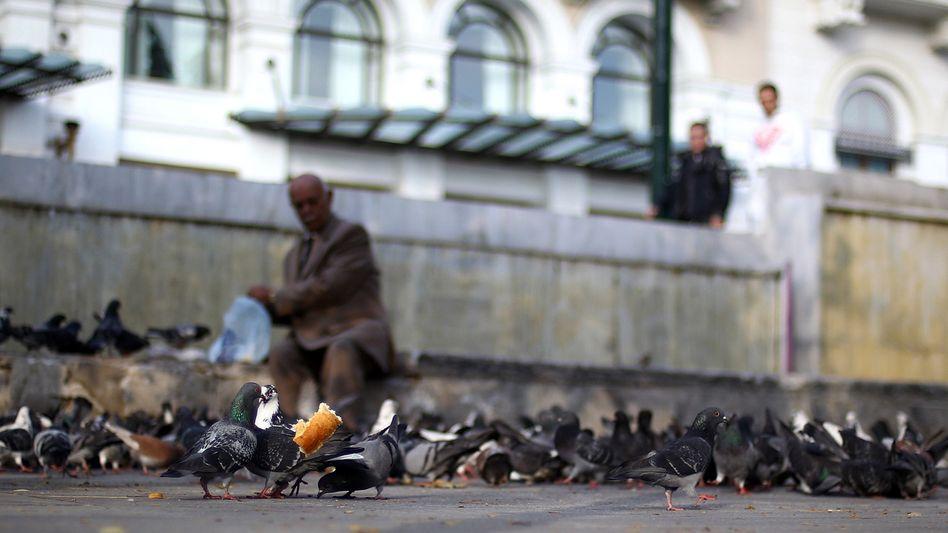 Älterer Grieche beim Taubenfüttern in Athen: Elektronische Überwachung geplant