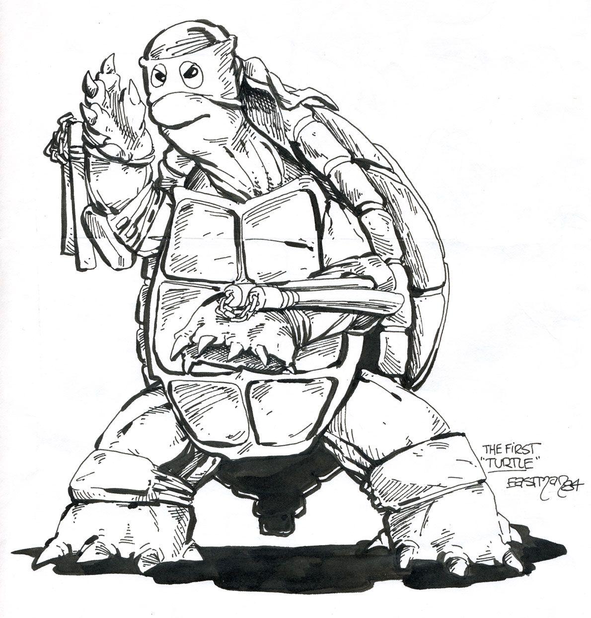 NUR FÜR EINESTAGES Turtles Zeichnung