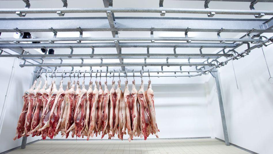 Tote Schweine in einem Schlachthaus: Laut dem Klimarechner des Umweltbundesamts ist jeder Bürger im Schnitt für 11,61 Tonnen CO2 im Jahr verantwortlich