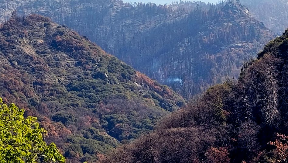 Rauch steigt auf: Im Sequoia-Nationalpark sind die Nachwirkungen der Waldbrände von 2020 zu sehen