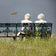Arbeitgeber kritisieren Rentensteigerungen in der Coronakrise