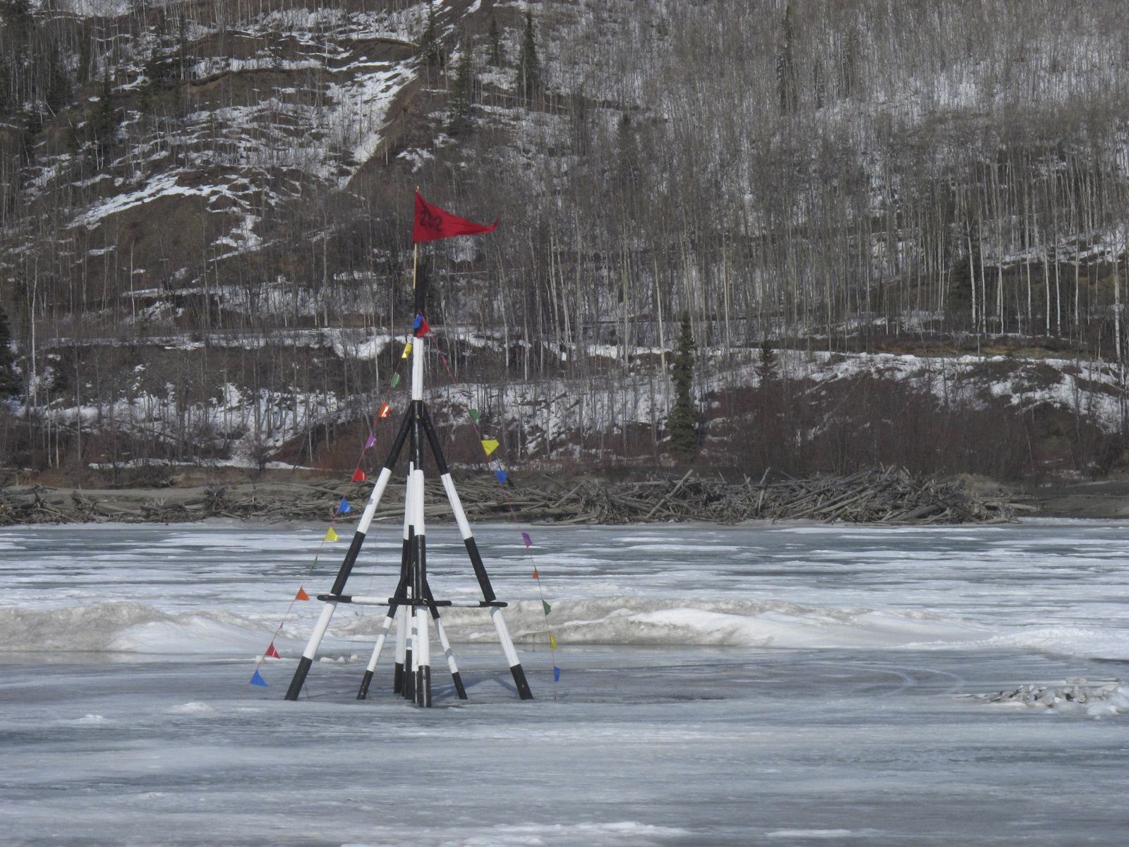 EINMALIGE VERWENDUNG Nenana Ice Classics/ Alaska