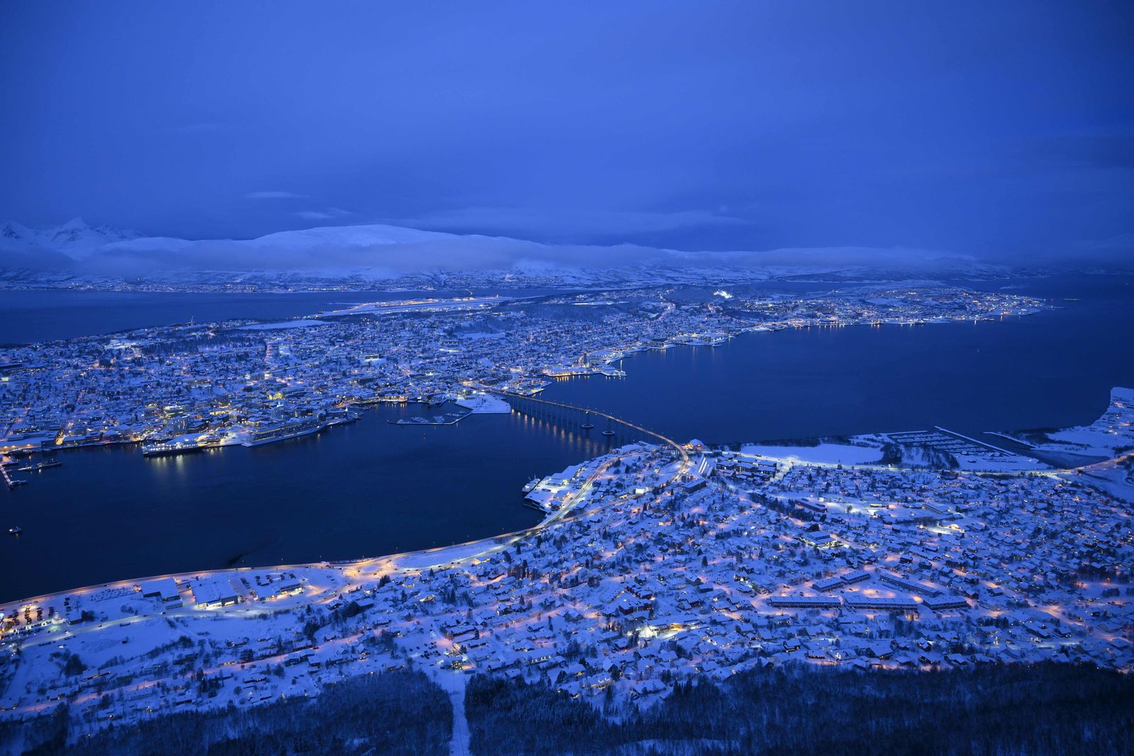 NORWAY-ARCTIC-ENVIRONMENT-ANIMALS-ORCAS