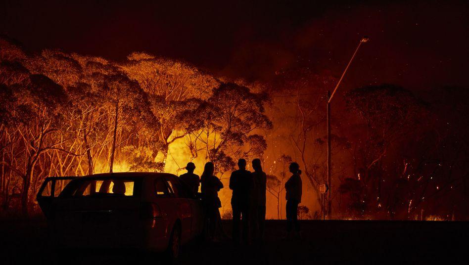 Buschfeuer am Lake Tabourie, Australien