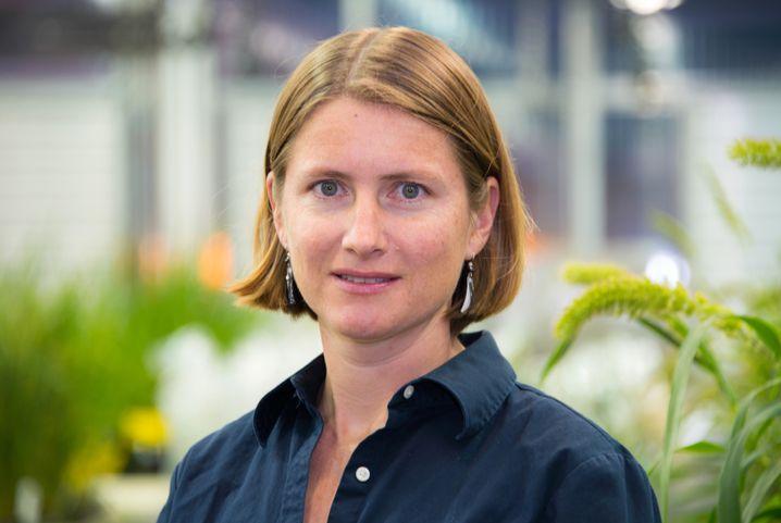 Rebecca Bart