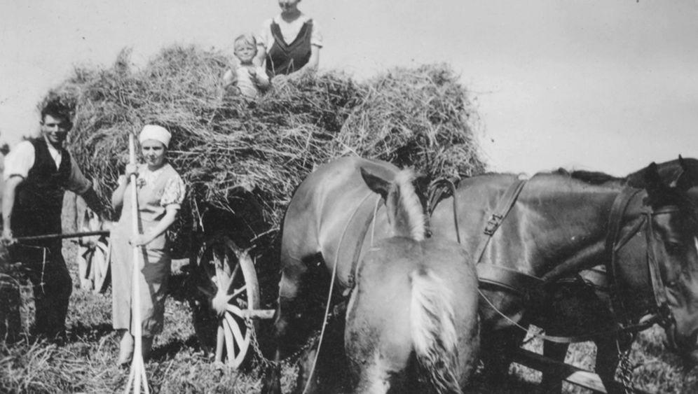 Heimliche Liebe in der NS-Zeit: Der Kriegsgefangene und Lebensretter