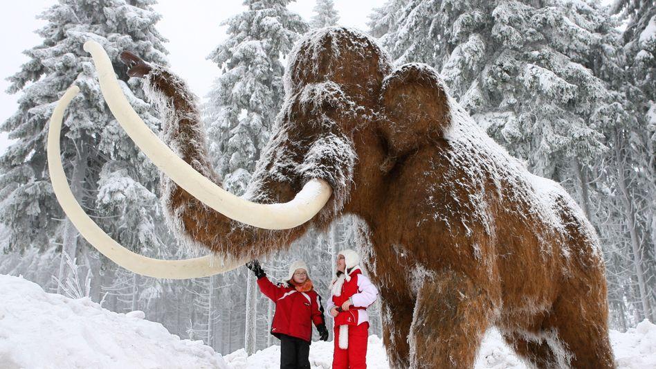 Mammut-Nachbildung (Archivbild): Sauerstoff bis in die Extremitäten