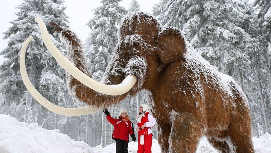 Mammut-Modell (in Oberhof): Löste ihr Aussterben eine Kältewelle aus?