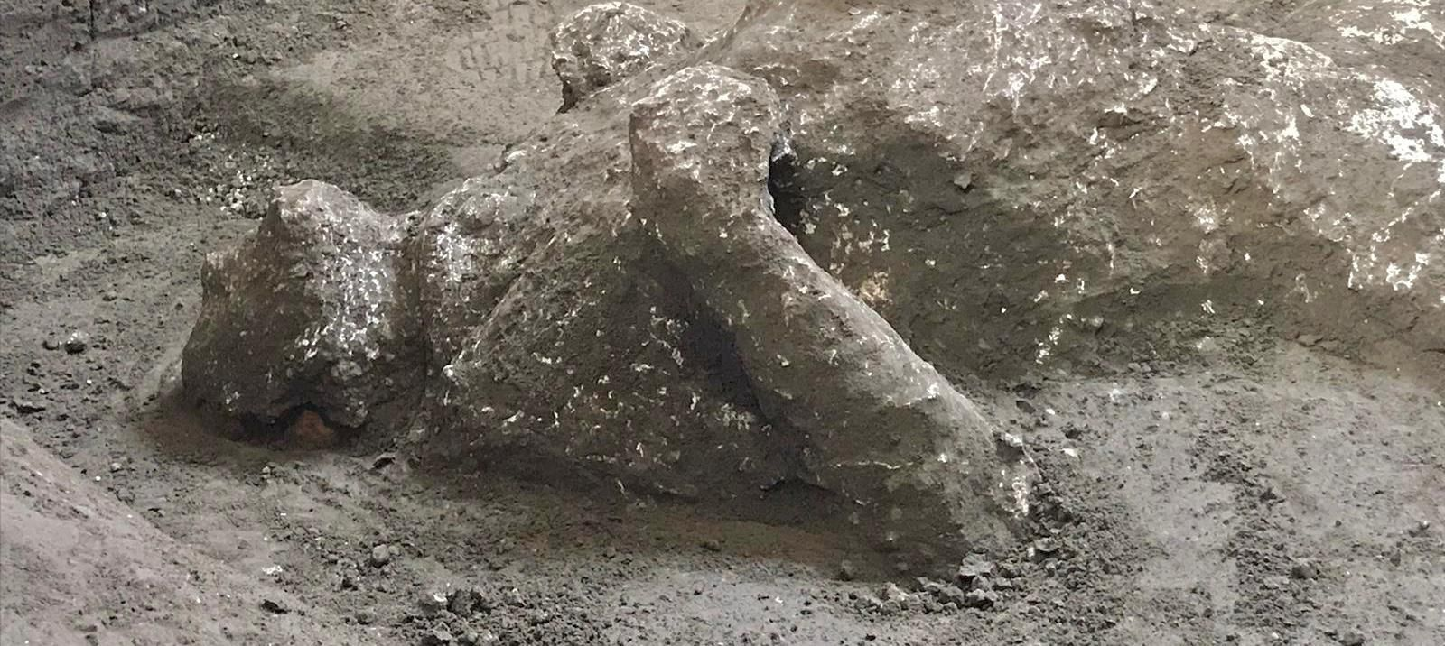 Spektakuläres aus Pompeji: Vulkan-Opfern gefunden