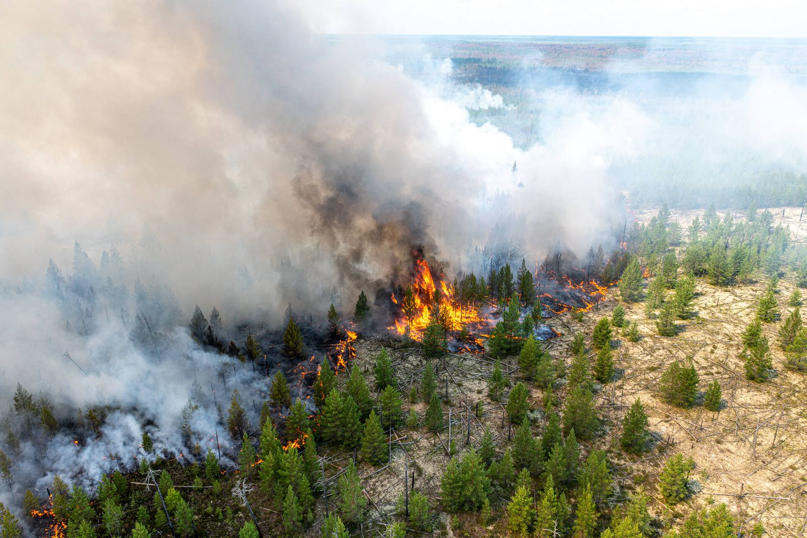 News Bilder des Tages KHANTY-MANSI AUTONOMOUS AREA, RUSSIA - JULY 21, 2020: An aerial view of a wildfire in the taiga in