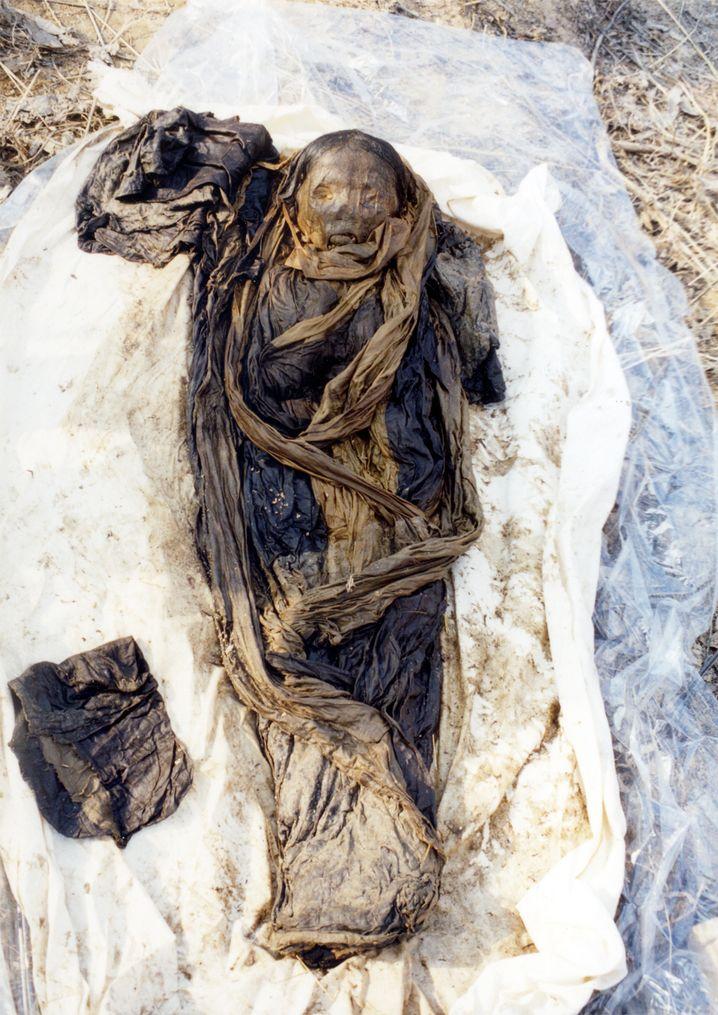 Koreanische Mumie: Forscher finden uralte Hepatitis-B-Erreger