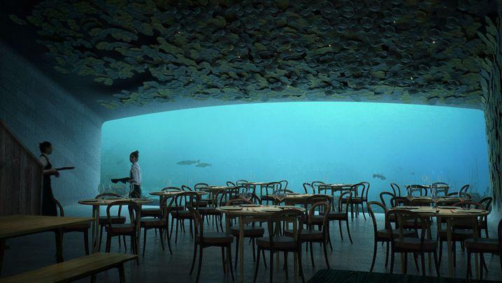"""Restaurant """"Under"""": Küstenschmaus"""