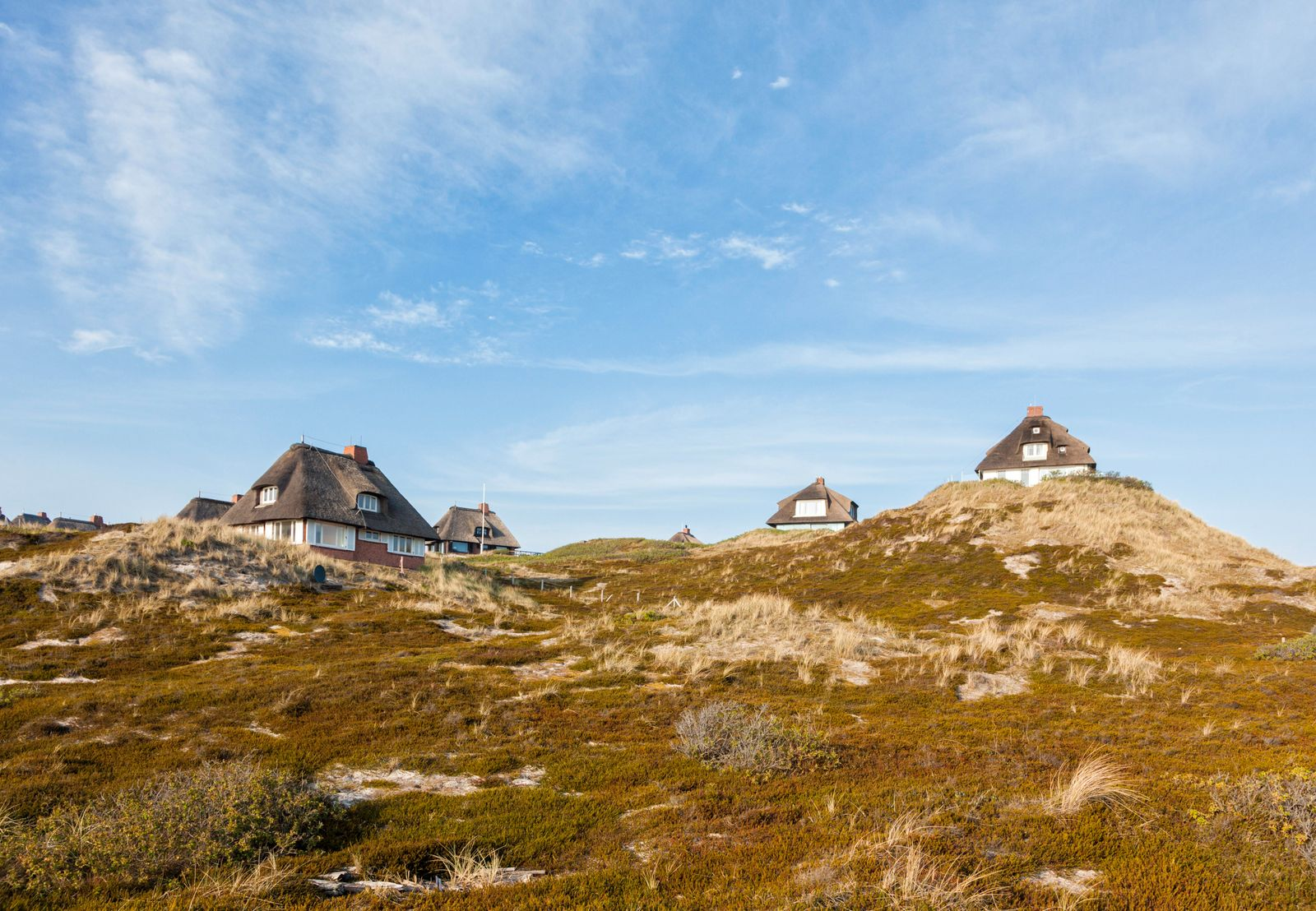 Summer houses in the dunes of Sylt, Germany