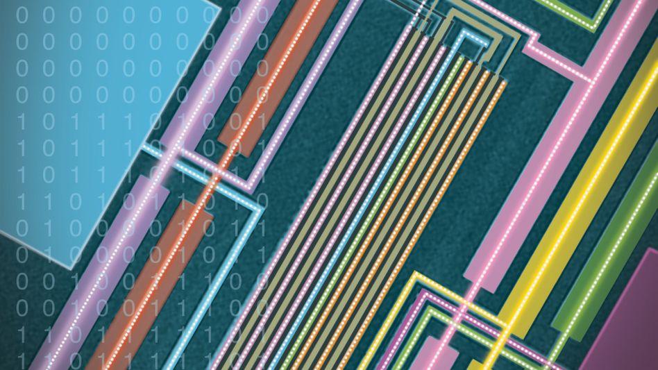 Winzige Röhren: Die Leiterbahnen des Rechners aus Kohlenstoff-Nanoröhren, aufgenommen mit einem Elektronenmikroskop