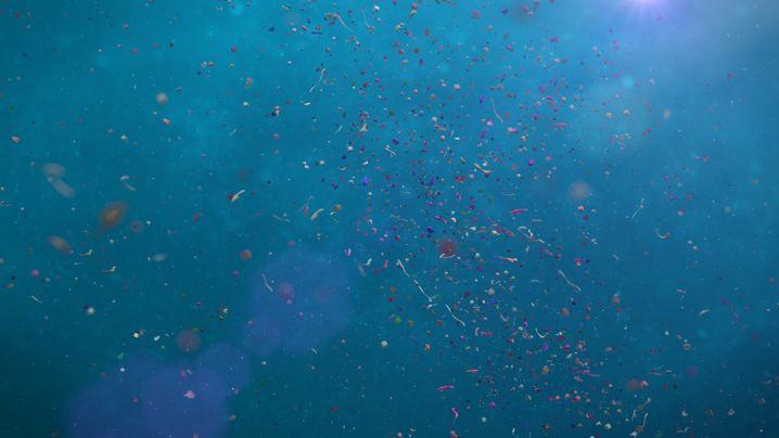 Plastikteile werden im Meer über große Distanzen verteilt