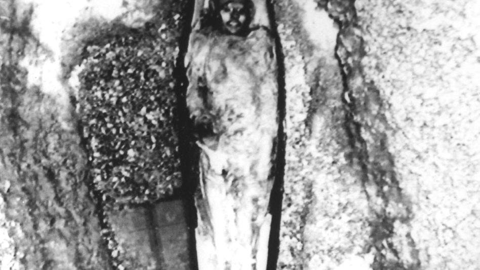 Mumifizierte Leiche von John Hartnell (Archivbild von 1986)