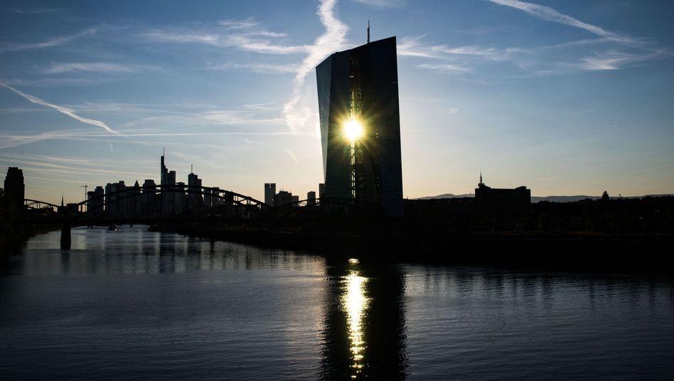 Der Sitz der Europäischen Zentralbank in Frankfurt am Main (Archivbild)
