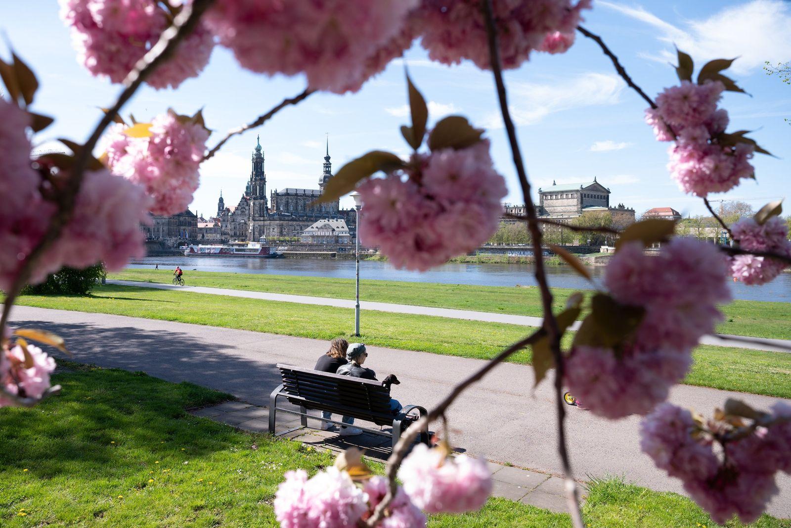 Sommerwetter - Dresden