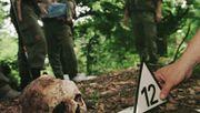 Wie das Massaker von Srebrenica die Welt erschütterte