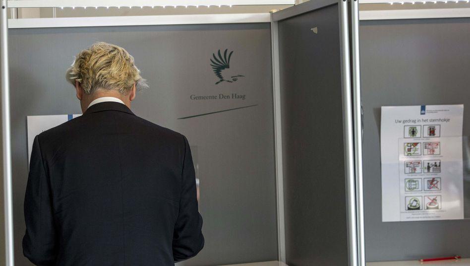 Europawahl in den Niederlanden: Prognose sieht Rechtspopulisten Wilders als Verlierer