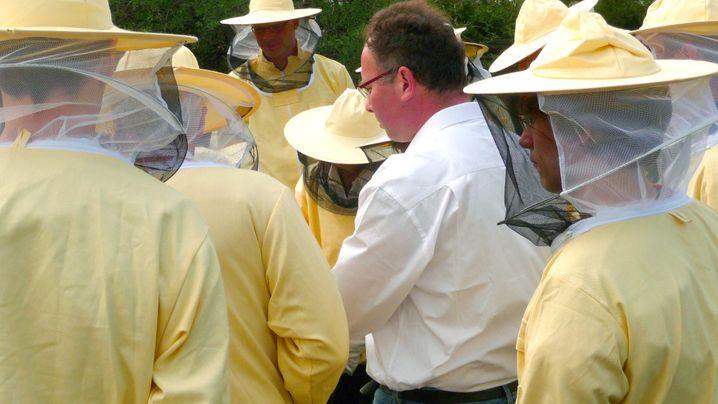 Urban Beekeeping: Neue Imker braucht das Land