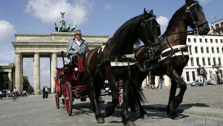 Pferdekutschen in Berlin: Fahrverbot bei Sommerhitze