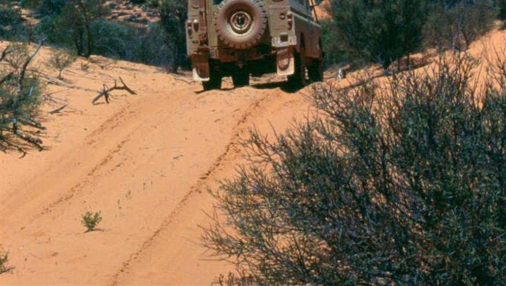 Land Rover Serie III, Baujahr 1982: Die Wüste lebt
