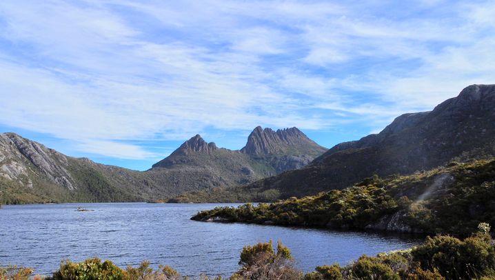 Familienreise auf Tasmanien: Kinder, Camper, Kängurus