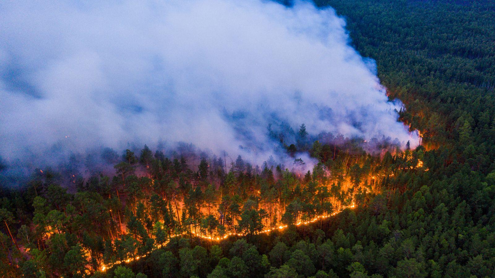 An aerial view shows a forest fire in Krasnoyarsk Region