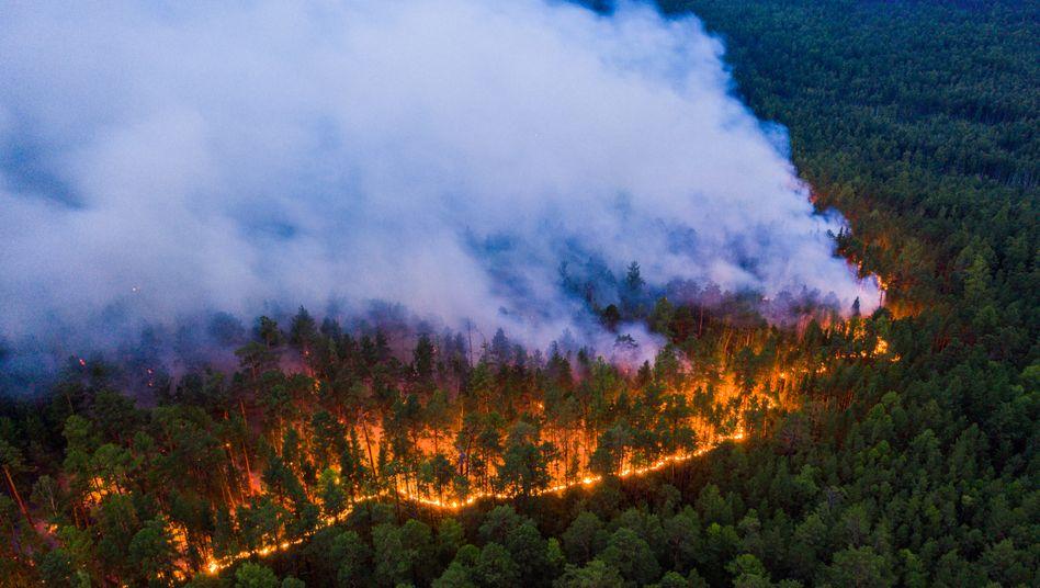 Die Waldbrände im flächenmäßig größten Land der Erde liegen meist entfernt von Städten und Dörfern, vereinzelt kommen sie Siedlungen aber näher